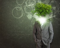 Businessman stand with green tree instead his head Royalty Free Stock Photo