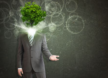 Businessman stand with green tree instead his head Stock Photos