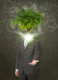 Businessman stand with green tree instead his head Stock Images