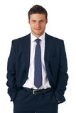Businessman Standing. royalty free stock image