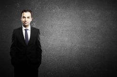 Businessman standing Stock Images