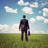Businessman standing in a field Stock Photos