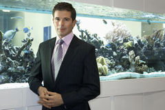 Businessman standing beside fish tank, smiling, portrait Royalty Free Stock Images