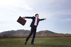 Businessman standing on green meadow with a briefcase Stock Photo