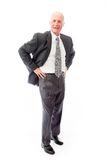 Businessman standing with his arms akimbo Stock Photos
