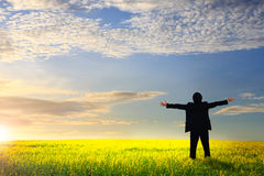 Businessman standing on a meadow Royalty Free Stock Images