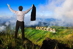 Businessman standing on a peak at mountain. Success in business concept stock photo