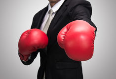Businessman standing posture in boxing gloves isolated Stock Image