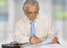 Businessman. Successful senior businessman in the office Royalty Free Stock Image