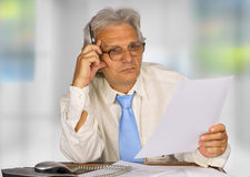 Businessman. Successful senior businessman in the office Royalty Free Stock Photo