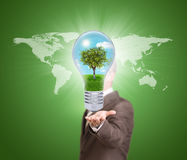Businessman in a suit hold bulb with tree Royalty Free Stock Photography