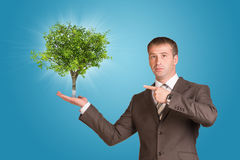 Businessman in a suit hold green tree Royalty Free Stock Images