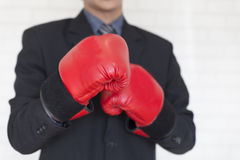 Businessman in suit with red boxing gloves Royalty Free Stock Images