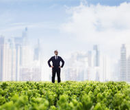 Businessman in sunglasses  and hands on hips standing in a green field with city skyline in the background Stock Photo