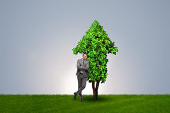 The businessman in sustainable green development concept Royalty Free Stock Photo