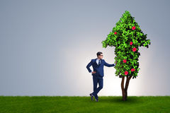 The businessman in sustainable green development concept Royalty Free Stock Photos