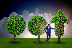 The businessman in sustainable green development concept Royalty Free Stock Image