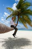 Businessman with tablet pc sitting on palm tree Royalty Free Stock Image