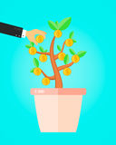 Businessman take a coin from money tree. financial income business concept. Royalty Free Stock Images