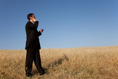 Businessman talking on the cellphone Stock Image