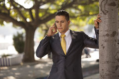 businessman talking at his cellphone Stock Photography