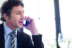 Businessman talking on the mobile phone Royalty Free Stock Image