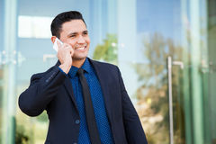 Free Businessman Talking On The Phone Stock Images - 47882834