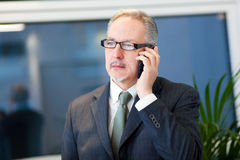 Businessman talking on the phone in his office Stock Images