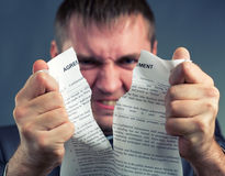 Businessman tearing agreement. Angry businessman tearing agreement in pieces Stock Photography
