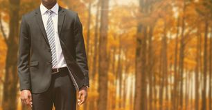 Businessman Torso in the forest Royalty Free Stock Photo