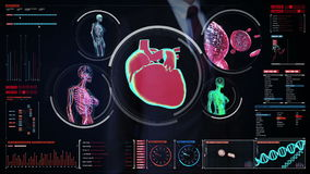 Businessman touching digital screen,  Female body scanning blood vessel, lymphatic, heart, circulatory system in digital display d. Ashboard stock footage
