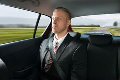 Businessman travelling in car Stock Photos
