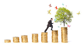 Businessman and tree with butterflies on money stairs Stock Images
