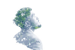 Businessman and tree. Double exposure of businessman and tree on white background Stock Photos