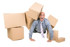 Businessman under boxes Stock Photos