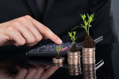 Businessman using calculator by stacked coins with plants Royalty Free Stock Photos