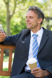 Businessman using cellphone at park Royalty Free Stock Images