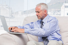 Businessman using his laptop Stock Photos