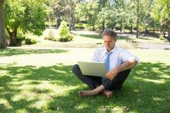 Businessman using laptop on grass Royalty Free Stock Image