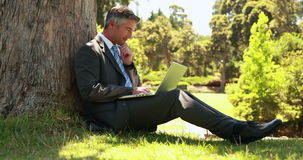 Businessman using laptop in the park stock video