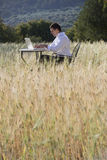 Businessman using laptop at table in rural field Stock Photos