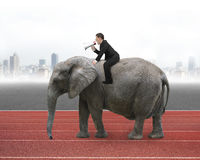 Businessman with using speaker riding on walking elephant. With city skyline and red track background stock image