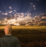 Businessman Views Beautiful Landscape Royalty Free Stock Photo
