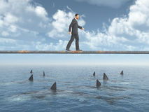 Businessman walking on a board over the sea. Computer generated 3D illustration with a businessman walking on a board over the sea with great white sharks Royalty Free Stock Photography