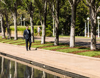 Businessman walking in a public park. Business man dressed in a suit walking along a pond in a public park in full daylight Stock Image