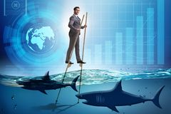 The businessman walking on stilts among sharks royalty free stock image