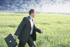 Businessman walks with suitcase. In the field go to future ahead Stock Image