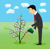 Businessman watering dollar plant Royalty Free Stock Photos