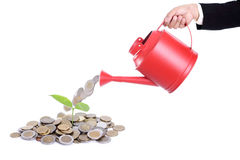 Businessman watering for money growing concept Royalty Free Stock Photos