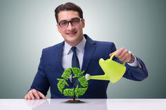 The businessman watering plan in recycling concept. Businessman watering plan in recycling concept Stock Photos